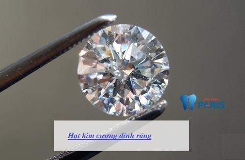 hạt kim cương đính răng 1